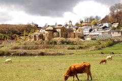 24- San Martin de Castañeda_0215