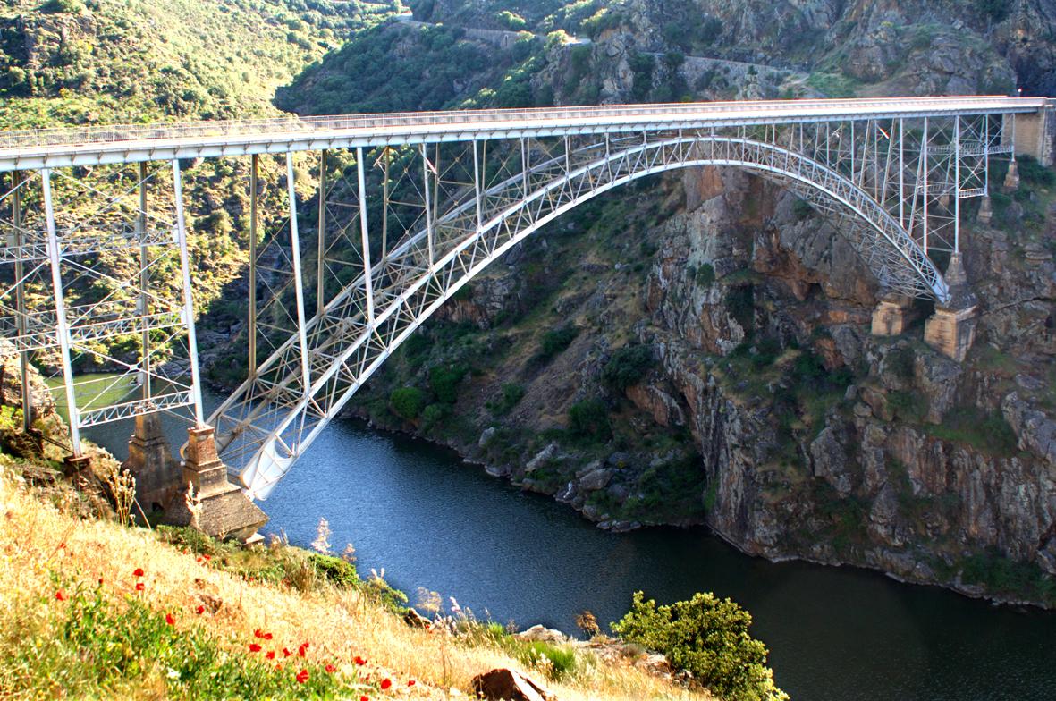 puente pino